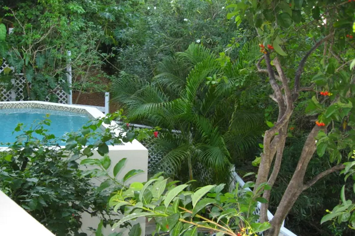 Lush tropical surround a private pool at Ocean Kaleidoscope
