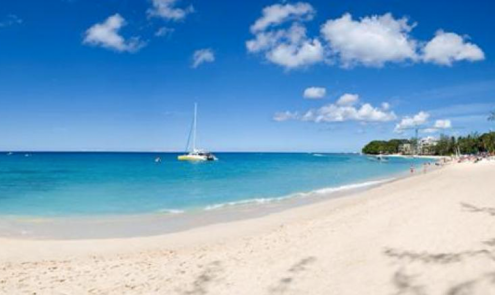Photo of Halcyon at Old Trees Bay, Barbados