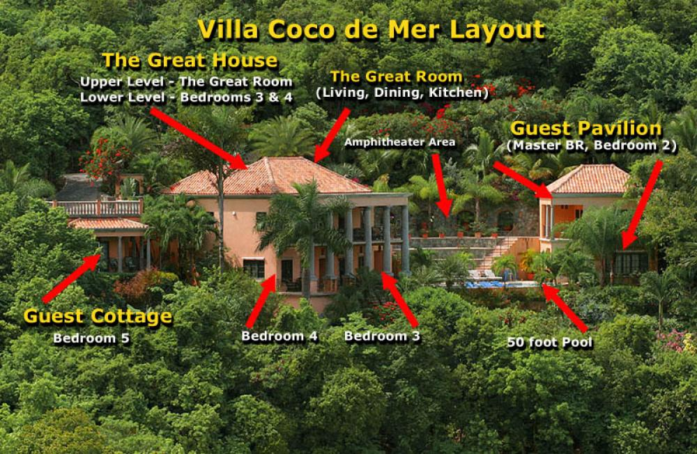 Coco de Mer at Peter Bay on St. John