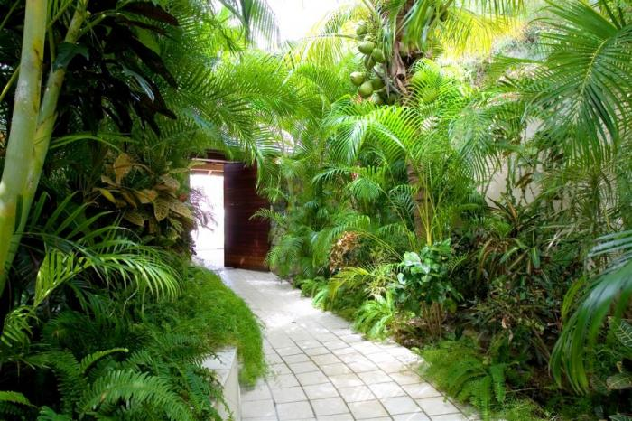 Paths through the lush gardens.