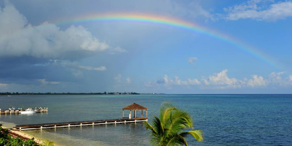 Photo of Picture Perfect, Cayman